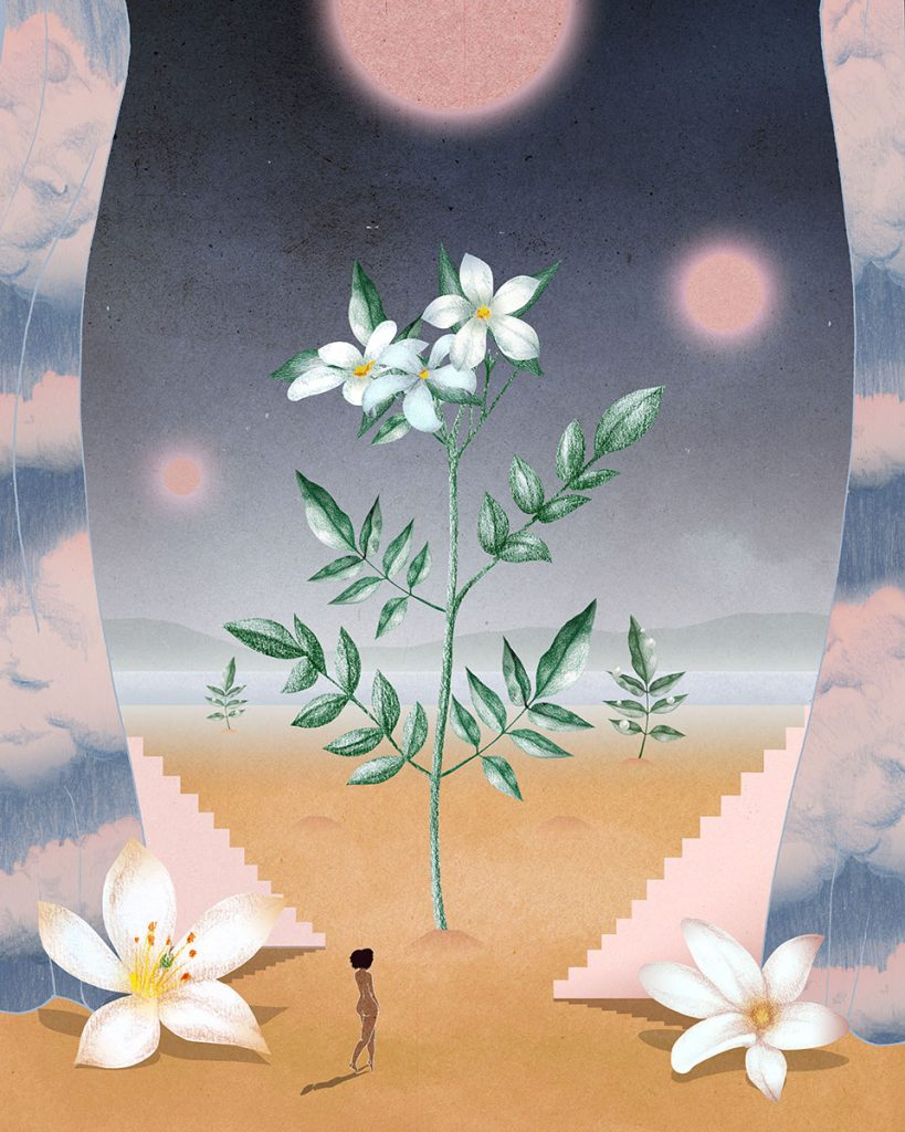 af3b2394ecd Miu Miu Illustration Charlotte Edey