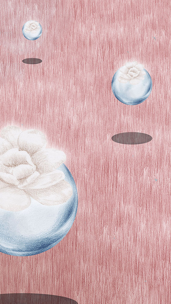 Miu Miu Illustration Charlotte Edey